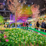 Where to Park for the Philadelphia Flower Show