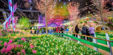 PHL Flower Show-min